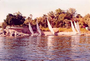Aswan, Egypt : Nile View