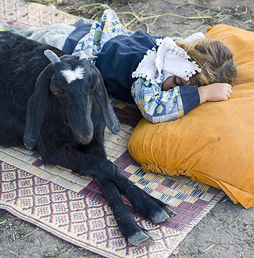 A little girl and what appears to be her guardian goat at a camel market in the Delta