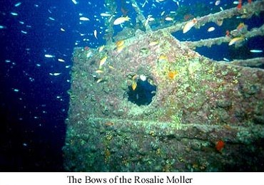 We find the Rosalie Moller