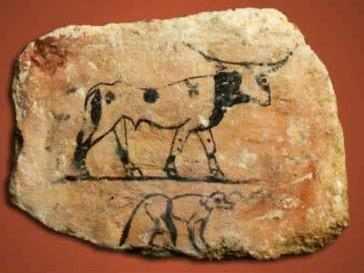 Limestone Ostracon of a bull and baboon from the tomb of Hemaka No. 3035 at Saqqara