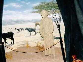 The bedouin's life in the desert and their reliance on raising sheep, goats and camels, as well as wool spinning.