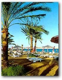 Red Sea Beaches: Sharm el Sheikh (Scene 1)