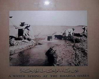 Photo of a water spring at the Kharga Oasis
