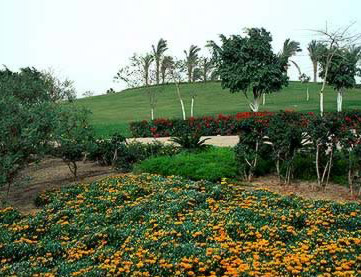 Rolling hills and gardens of the Al-Azhar Park in Islamic Cairo, Egypt