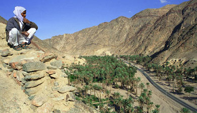 A bedouin looks down upon the Wadi Feiran, one of the routes to Mout Sinai where the Seven Girls Monastery is located