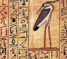 The Benu Bird from the Book of the dead
