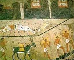 Egypt: Ancient Egypt Farming