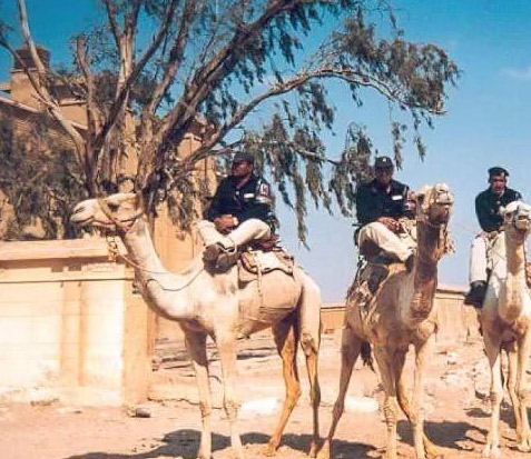 The Camel Police of Giza