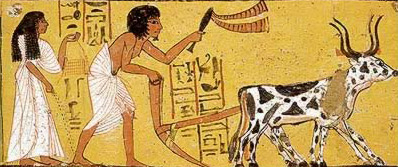 Oxen pulling a plow during planting from the Tomb of Sennedjem on the West Bank at Thebes