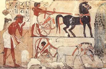 From the 18th Dynasty, the top chariot pulled by horses, while the lower chariot is pulled by mules.