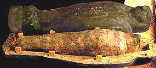 essays about mummification Mummification had a great affect on egyptian culture, and became a part of their religion, and it evolved over time some animals where mummified for use of most human.