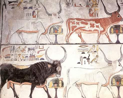The Sky Bull, and Three of the Sacred Seven Hathor Cows  From the tomb of Nefertari, Valley of the Queens
