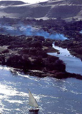 Nile Crocodiles no longer ply the waters north of the Aswan Dam in Egypt