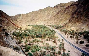 View of the Wadi Feiran