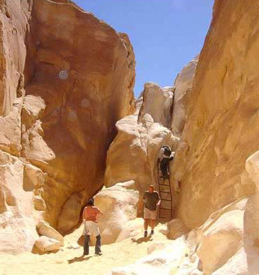 Ladder leading to the White Canyon