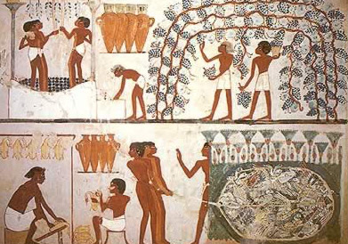 The diet of the ancient egyptians for Ancient egyptian cuisine