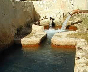 A local hot spring at  Farafra