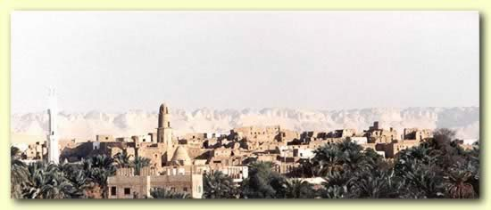 The Main City in the Farafra Oasis