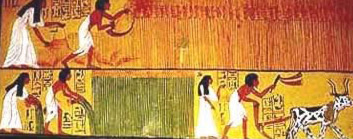 Egypt: Egyptian Society: The Peasant-Farmer, A Feature Tour Egypt ...