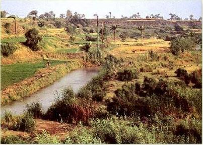 One of the many modern canals in the Fayoum of Egypt