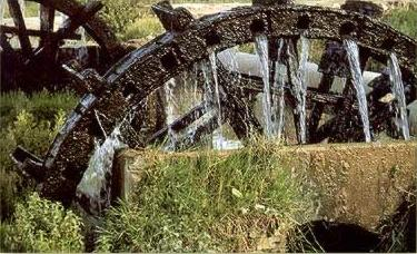 One of the ancient water wheels of the Fayoum Oasis, known as a saqya
