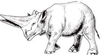 The Arsinoitherium