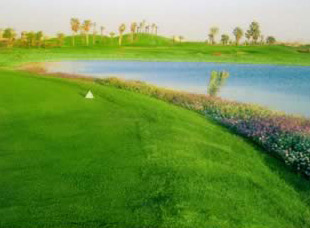 Dream Land Golf Resort in Egypt