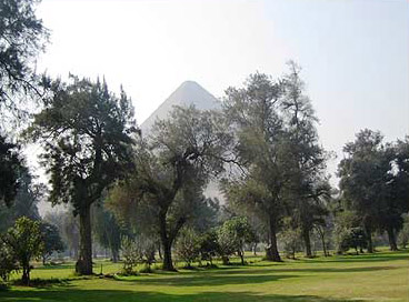 The Great Pyramids form a backdrop to the Mena House course