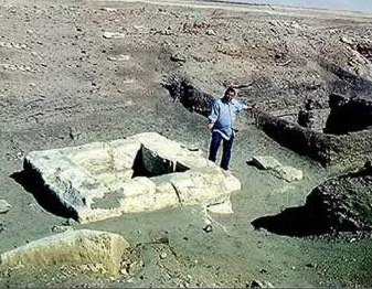 essays on egyptian architecture