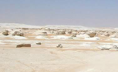 The White Desert