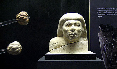 A bust and limestone maces of Old Kingdom origin from Hall four of the museum