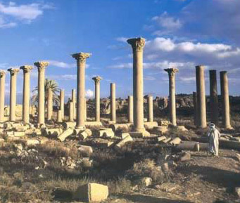 The colossal Corinthian columns of the basilica of Hermopolis