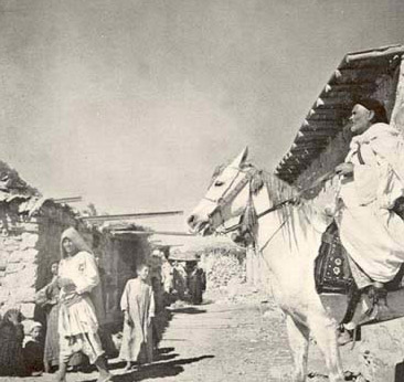 The Sheikh of Wadi Natrun, a fine study of a splendid type of Arab village headman
