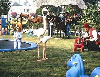 The Scoo-Bi-Zoo at the Pyramid Parks Intercontinental
