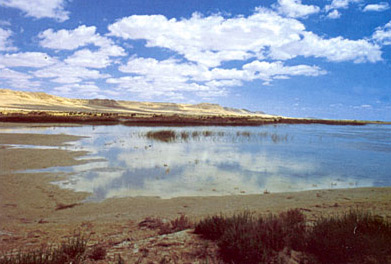 The far western end of  Lake Qarun