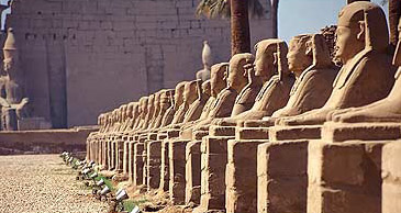 A view of the Avenue of Sphinxes