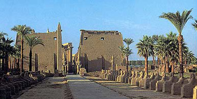 A view of the Avenue of Sphinxes as it leads up to the 1st Pylon at the Temple of Luxor