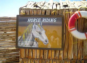 Horse Riding in Marsa Alam