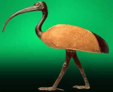 Thoth as a sacred ibis