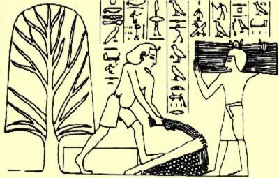 Old Age in Ancient Egypt