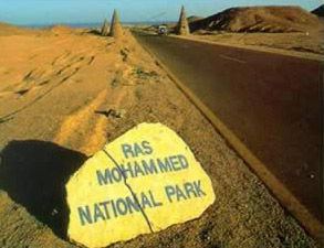A National Park in Egypt