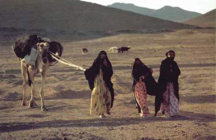 Three Bedouin Girls