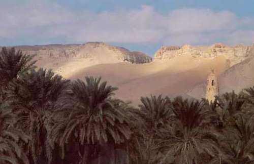 View of the Bahariya Oasis
