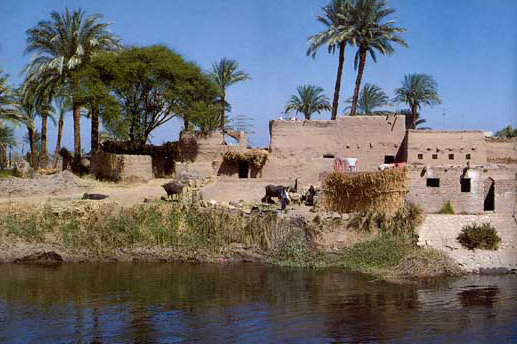 Daily Life Along the Nile