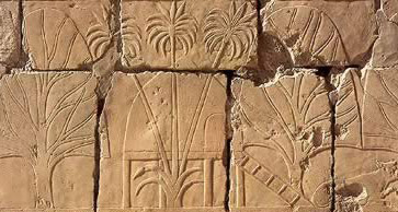 Image result for land of punt