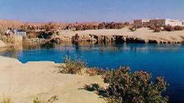 Nature Reserves of Egypt: Lake Qaroun