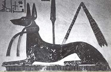 Anibus from the tomb of Ramesses III, with the sekhem-scepter behind him in the middle of the depiction