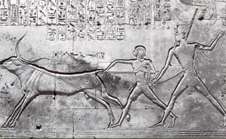 A scene of Seti one and  his son, Ramesses II