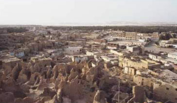 A view of Siwa City from  Shali