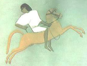 Ancient Egyptian Sports-Equestrian Sports